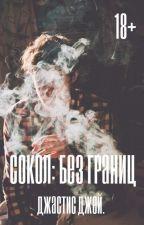 Сокол - без границ. +18. by JastisJayKlein
