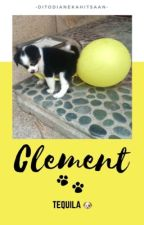 Clement (gxg) by diane_mcbl