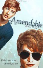 Amendable ~ Book 3 of 4 (COMPLETED) SOCIETY SERIES by SAMiAMiz