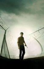 Daryl Dixon (Story of love) by mollyanauo