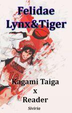 Felidae Lynx&Tiger 回Kagami Taiga x Reader回 by Siviria