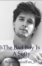 The Bad Boy Is a Softie(On Hold) by AlDeePal17_67
