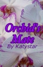 Orchid's Mate by Katystar