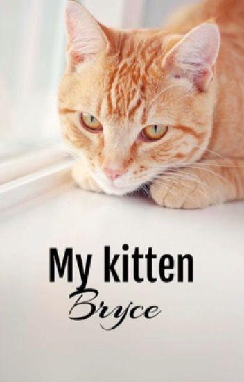 My Kitten Bryce|| BrOhm|| ~Hybrid AU~