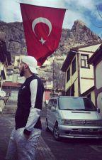 L'histoire de Melis by chronique_turc_