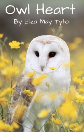Owl Heart by ElizaMayTyto