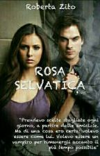 ROSA SELVATICA by RobertaZito1998