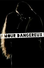 AMOUR DANGEREUX Tome 1&2 by alexia15054