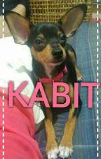 KABIT  by WannaKnowMeBetter