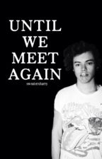 Until We Meet Again // H.S. AU by sweaterxharry