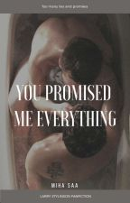 You promised me everything | larry by mihaszsas