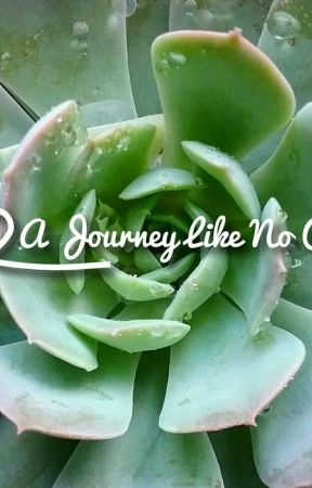 A Journey Like No Other  (A Joe Sugg Fanfic) by Story_time360