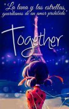 Together [Ladynoir]. by AllieGarcia9
