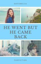 He went but he came back by kestiimeliaa
