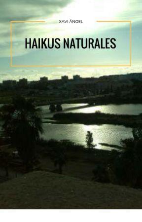 Haikus Naturales by Xabi_Angel