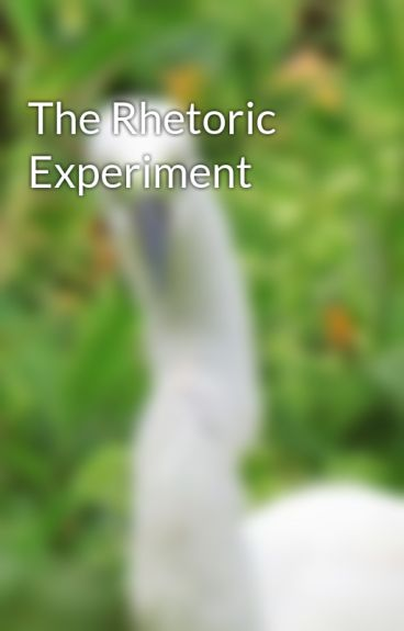 The Rhetoric Experiment by willatree2