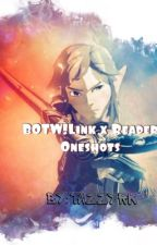 BoTW Link x Reader||*Oneshots* by Tazzyrk