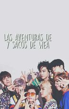 Las aventuras de 7 Sacos de wea by b-blxxd