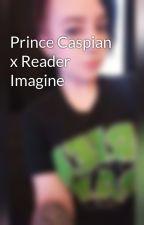 Prince Caspian x Reader Imagine by greywritinghood_