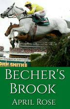 Becher's Brook by wickedstorygalaxy