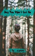 Say You Won't Let Go by csgrbrn