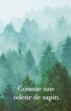 Comme une odeur de sapin. by MADEMOISELLEKIK0