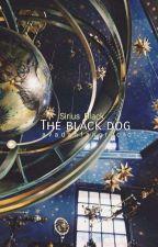 The black dog ➳ Sirius Black by avadanfancrucio