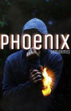 Phoenix  by DemiDemss