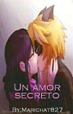 Un amor secreto [Temporada 1] [TERMINADA] [EDITANDO] by Marichat827