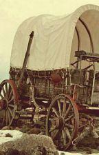 Wagon Wheels by Beatle4