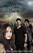 We're Not Broken (A Supernatural and The Walking Dead Crossover Fic) by thatbeigetrenchcoat