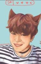 My little cat --- Jikook --- by Smurfetteinvertida