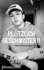 Plötzlich Geschwister ?! || Mario Novembre FF by pinacrime