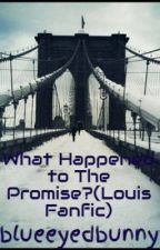 What Happened to The Promise?(Louis Fanfic) by blueeyedbunny786