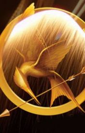 Hunger Games Dysopian Writing Contest Piece Dying Ash by lkouider