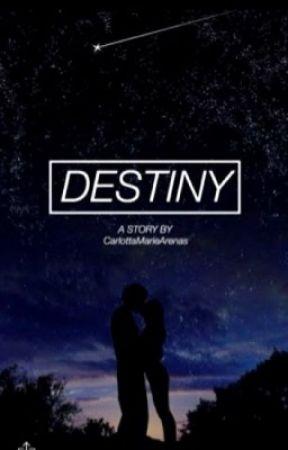 Destiny(?) by ElizeFaye143