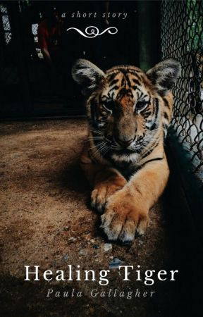 Healing Tiger by Pauladraws24