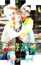 Say you won't let go || A Hudzie Fanfiction by justatypicalgurl