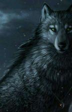 amar a un lobo  by yoaale