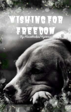 Wishing for Freedom by HeartBrokenMysteries