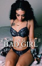 Taming the Bad Girl › h.s by Xaddy-