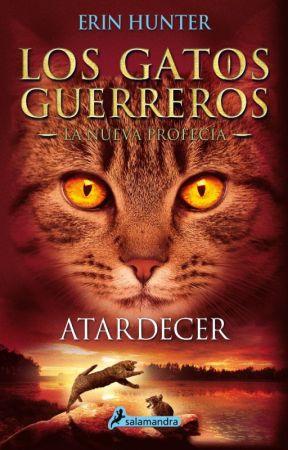 Los gatos guerreros - La Nueva Profecía - Atardecer by ysied18