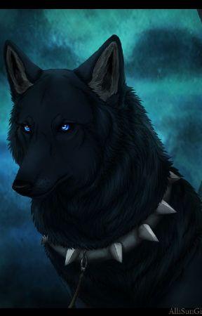 The Black Wolfdog ( Attack On Titan Fan Fiction ) by kanata10