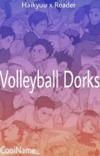 Volleyball Dorks || Haikyuu!! x Reader || One Shots ITA by CoolName_