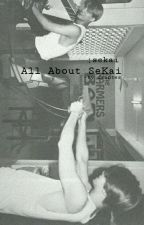 All About SeKai √ by daantes