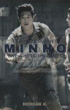 Minho x fem!Reader IMAGINES/ONE-SHOTS [THE MAZE RUNNER] by leahleewckd
