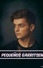 """¡Pequeños Garritsen! 2da Temporada de """"Del Odio al amor"""" Martin Garrix Y ______ by RooseOrtega"""
