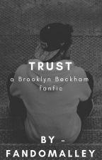 TRUST - a brooklyn beckham imagine by fandomalley
