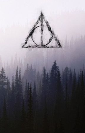 Facts about the Harry Potter Story by DorinaMimi