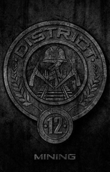 Life In District 12 A Hunger Games Fanfiction Poem Abdullah Riaz